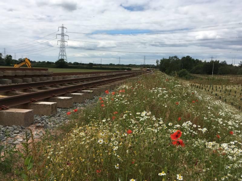 Erosion Control, East Midlands Gateway Rail Terminal, Kegworth, UK