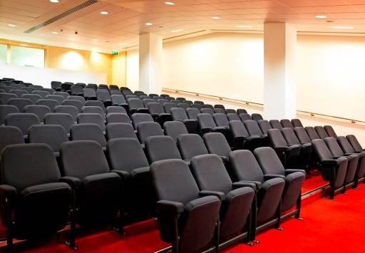 Asset A20 -Auditorium seating