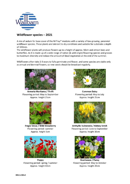 Wildflower species list