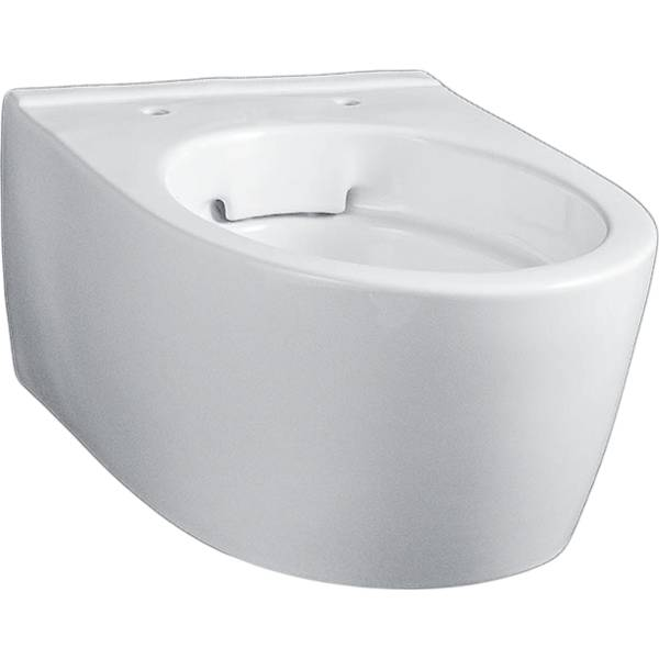 iCon wall-hung WC, washdown, small projection, shrouded, Rimfree