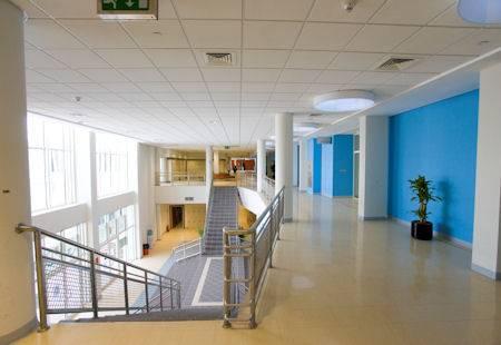 Standard XL Floor Covering