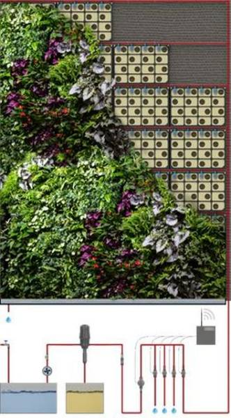 Biotecture Living Wall - Hydroponic System