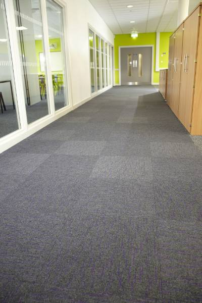College Case Study - Array Purple Carpet Tiles