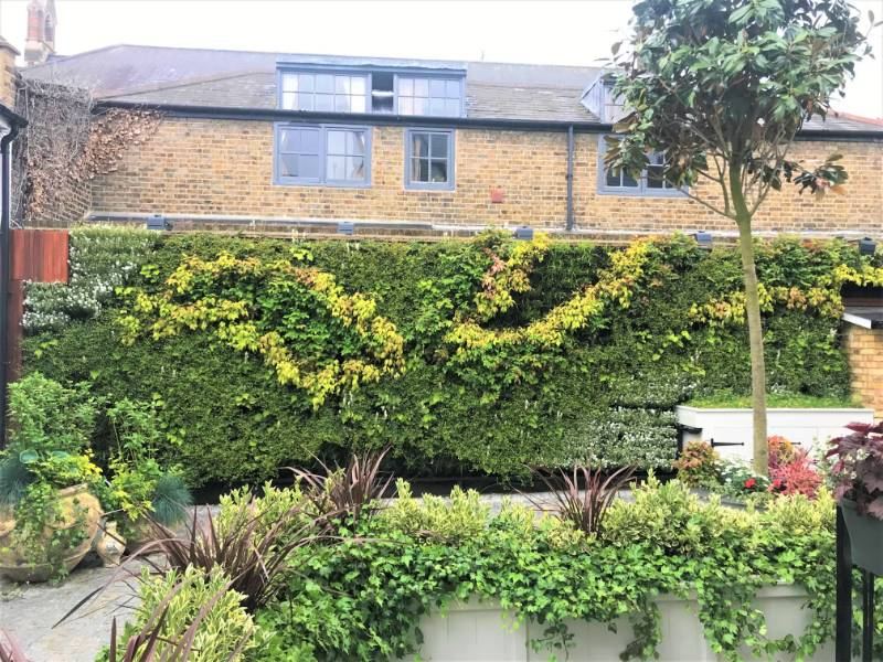 Living Walls Property Developer Clapham