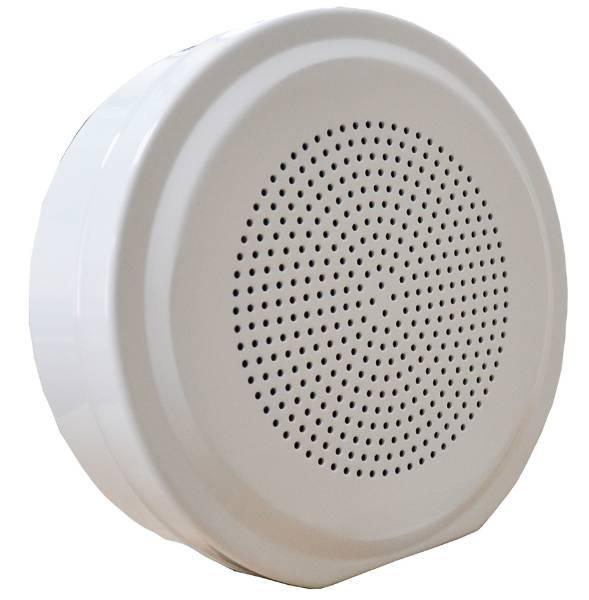 VoiceAlarmCabinetLoudspeaker