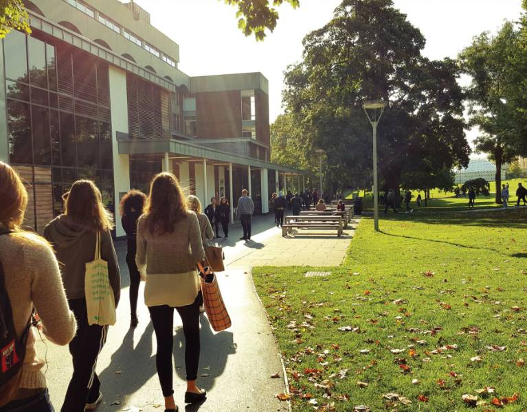 DMS at the University of Sussex
