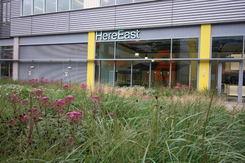 Here East Innovation Centre, London