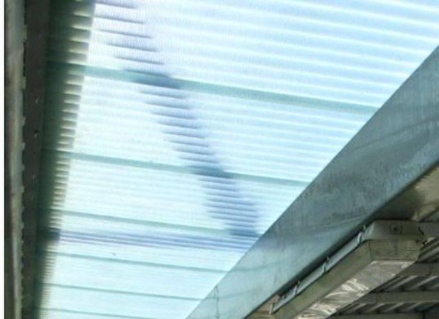 Webglas - GC