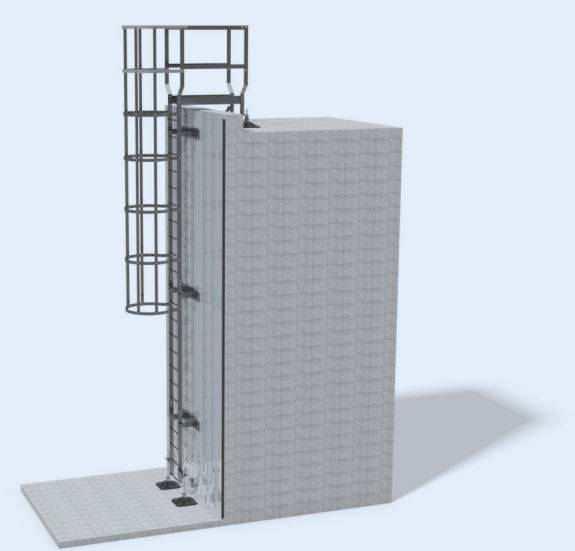 Ascent Access Ladders