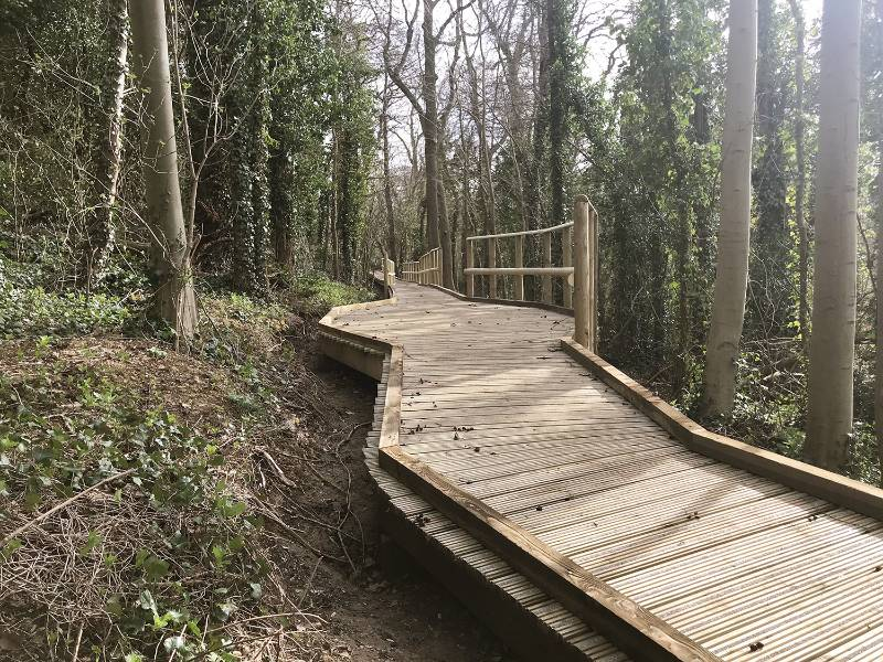 Decking - Nene Park Bluebell Wood Boardwalk