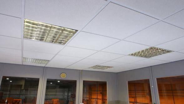 Lee-Grid Ceiling