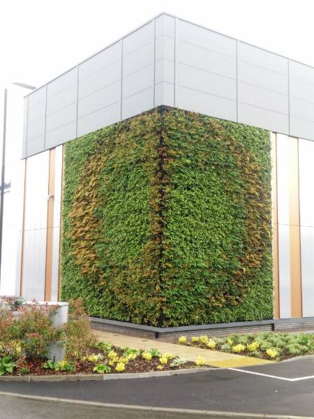The Rutherford Cancer Care centre Living Wall