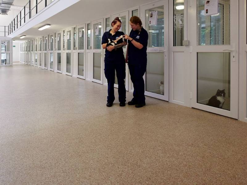 Polyflor donates flooring to local RSPCA centre