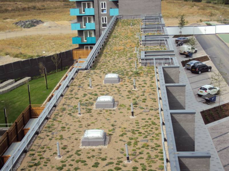 New Urban Development Roof Benefits From 1 Hour Curing Screed