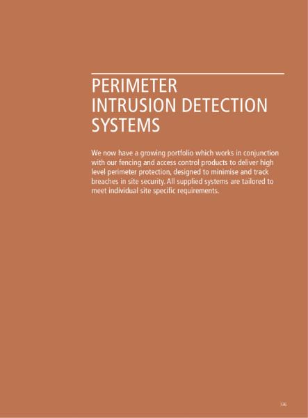 Perimeter Intrusion Detection Systems