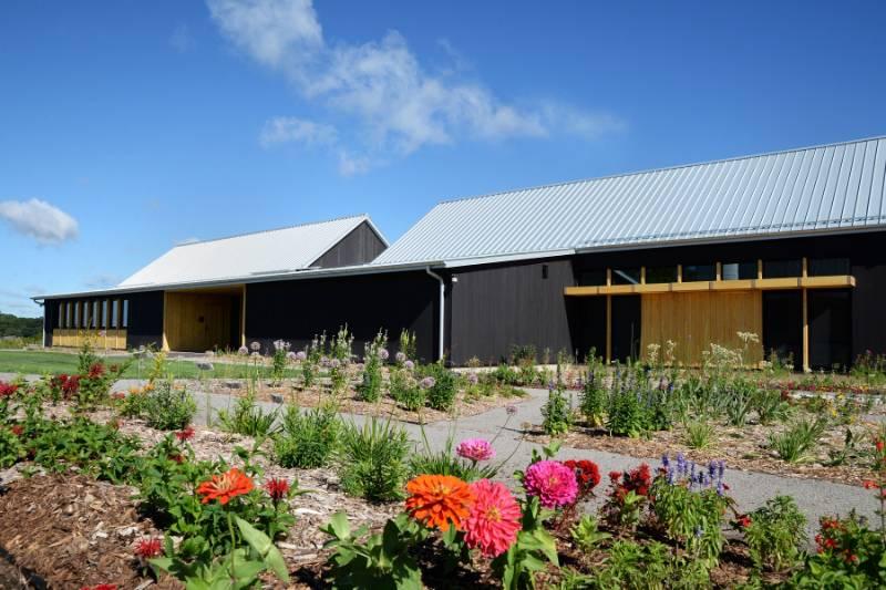 Accoya chosen for bee pollination centre