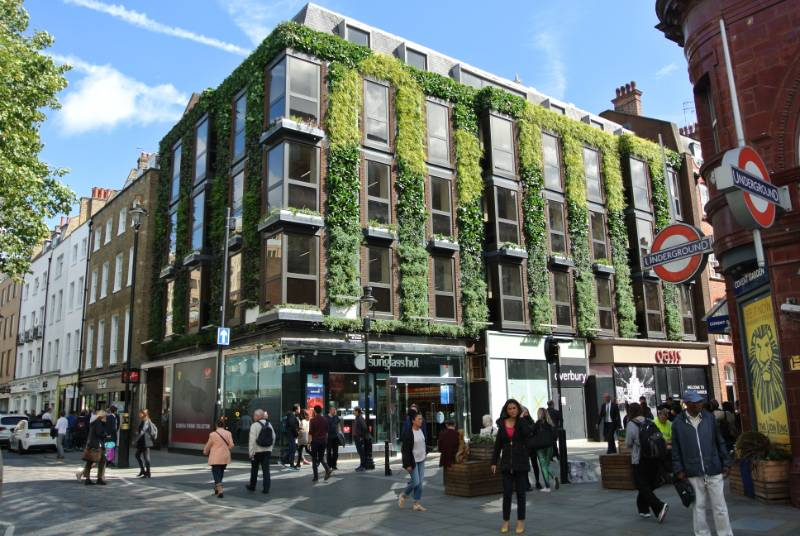 Covent Garden Living Wall