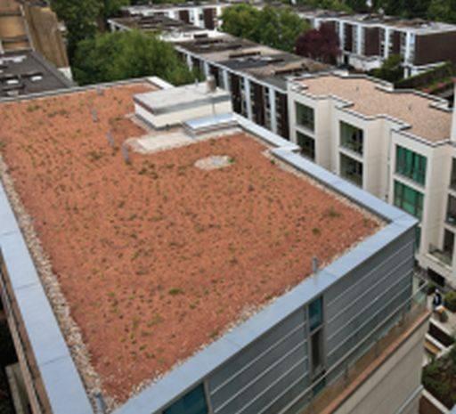 PermaQuik Semi-Intensive Green Roof System - Quantum (Pure)