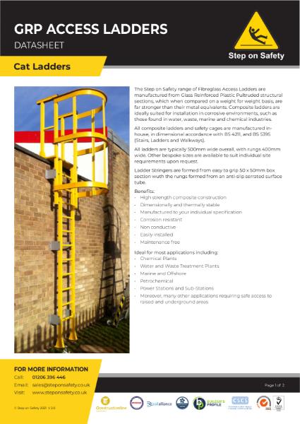 GRP Access Ladders
