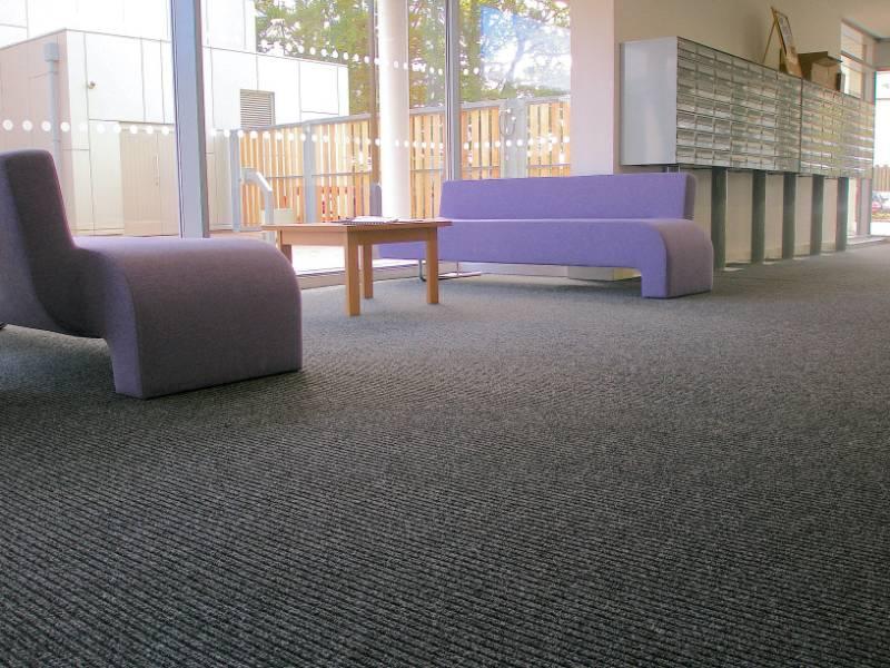 Hippo - Carpet