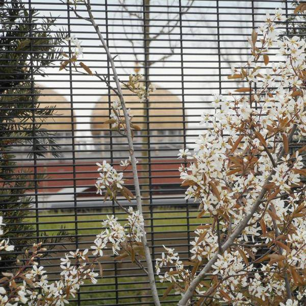 Securifor 4D+ Securifor Post With Coverplate - Metal mesh fence panel