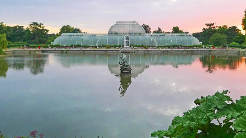 Kew Gardens - Oasis Full Height