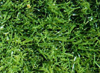 Laydex Fine Grass