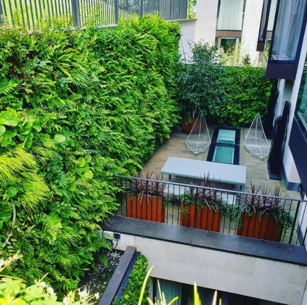 Living Wall for private residence
