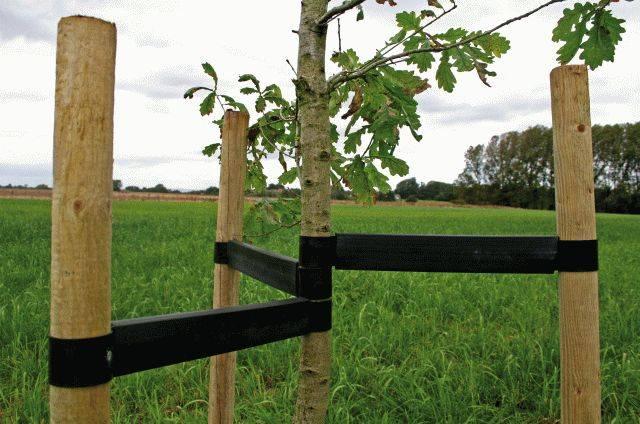 Holdfast Tree Ties