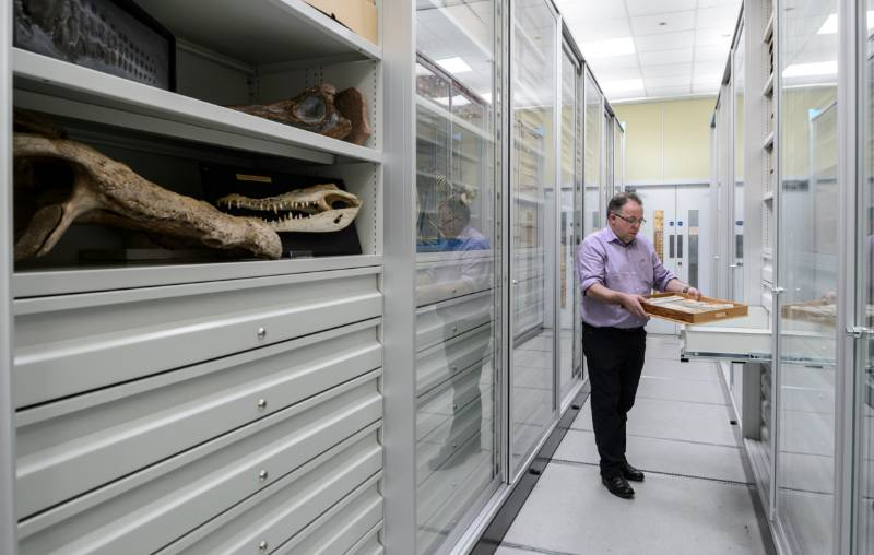 Bruynzeel Museum storage: Lapworth Museum of Geology