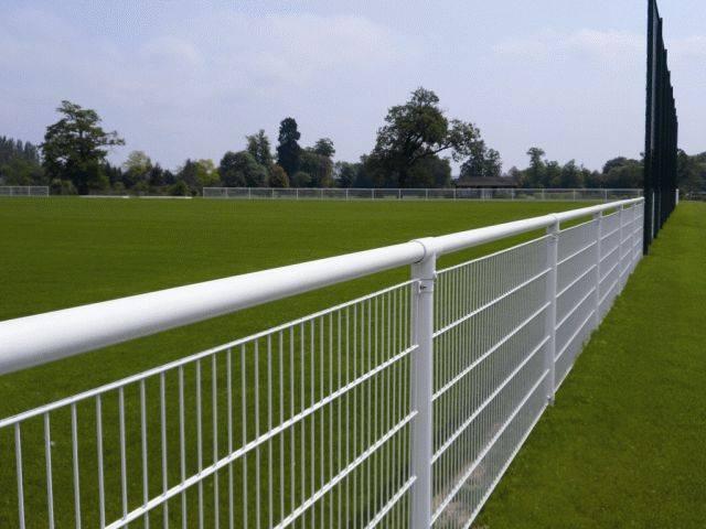 Sports Rail™