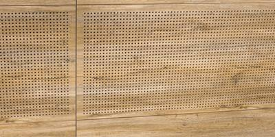 Acoustic (Perforated) Sports Wall Panel