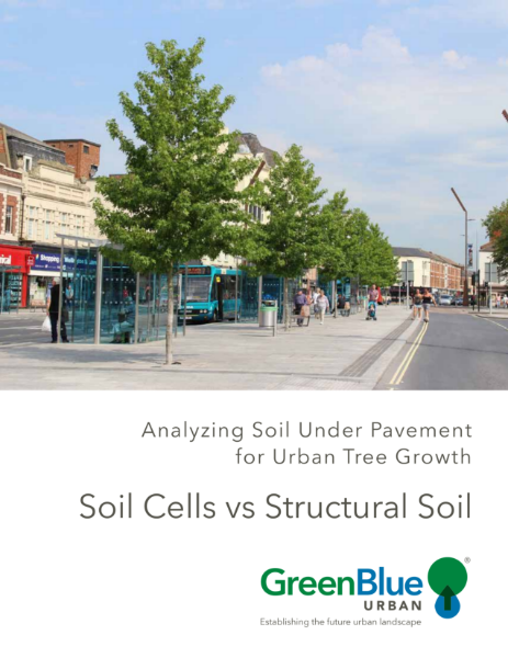 Soil Cells vs Structural Soil