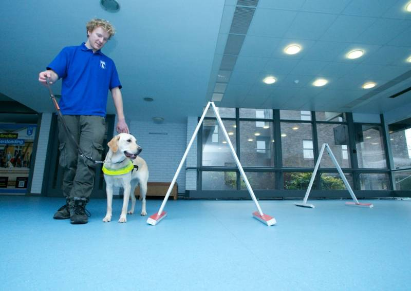 Polysafe Verona PUR flooring gets bark of approval at Guide Dogs Training School
