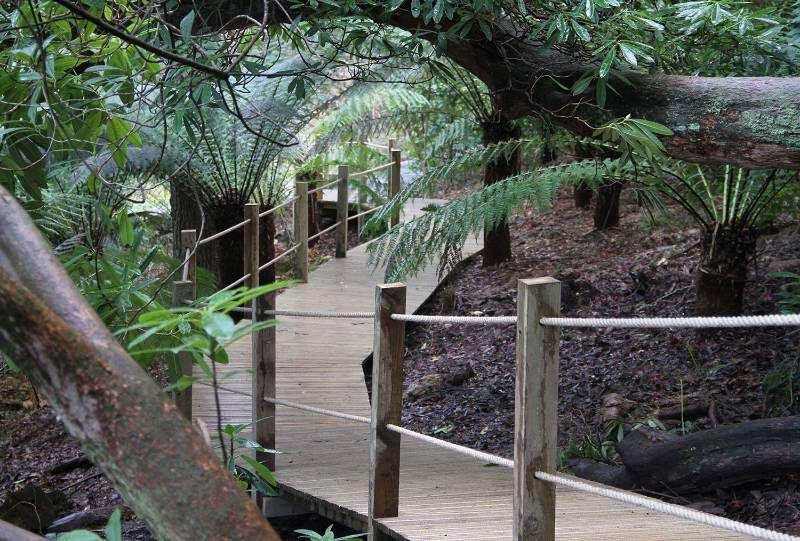 Decking - The Lost Gardens of Heligan