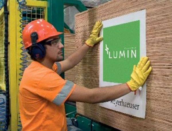 Lumin Plywood
