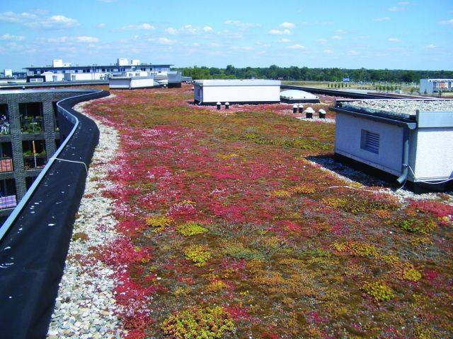 Eco-Roof System