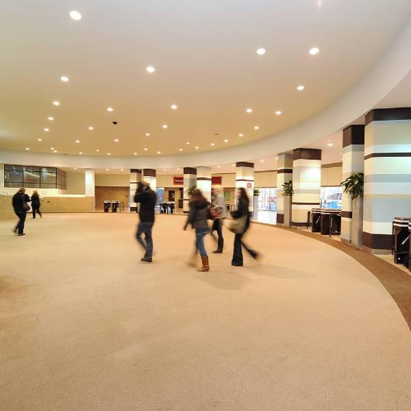 Genus & Volnay - Carpet Tile