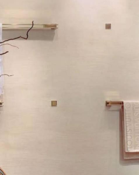 Striated Polished Plaster