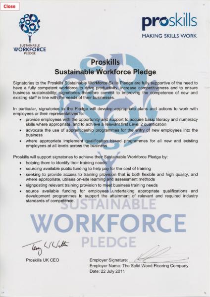 Proskills Sustainability Certificate
