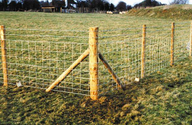 Fencing Stakes and Posts