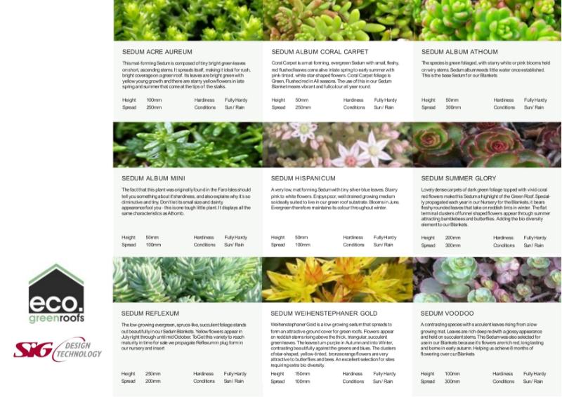 Eco Green Roofs Sedum Varieties Datasheet