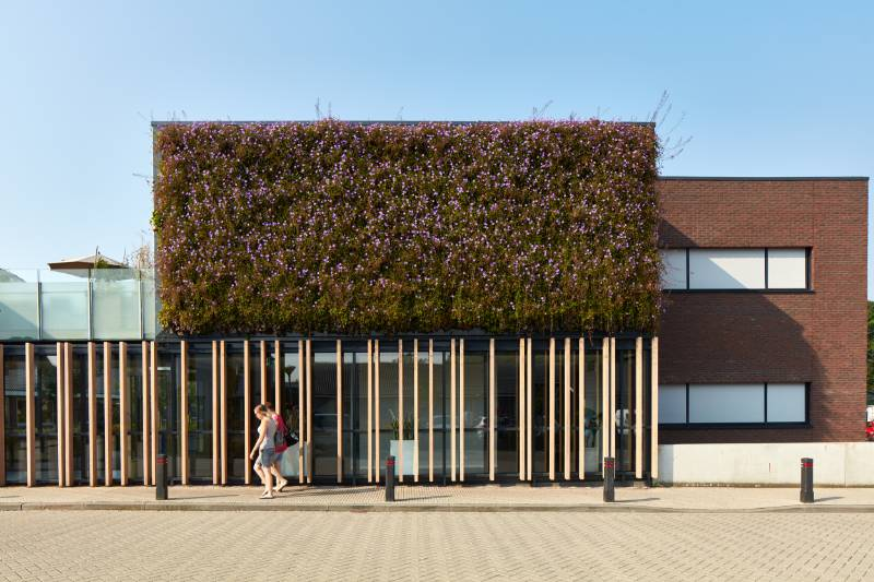 LivePanel® Living Wall External