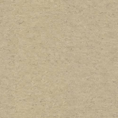 Linoleum xf2