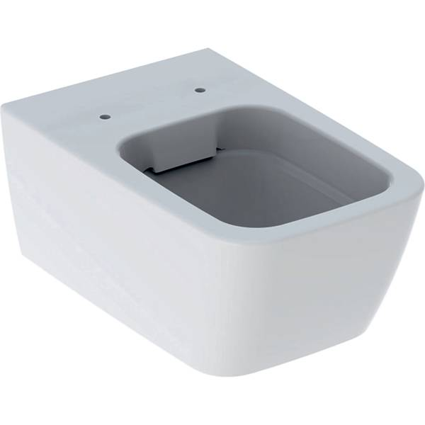 iCon Square wall-hung WC, washdown, shrouded, Rimfree