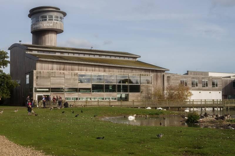 Decking - WWT Slimbridge Wetland Centre