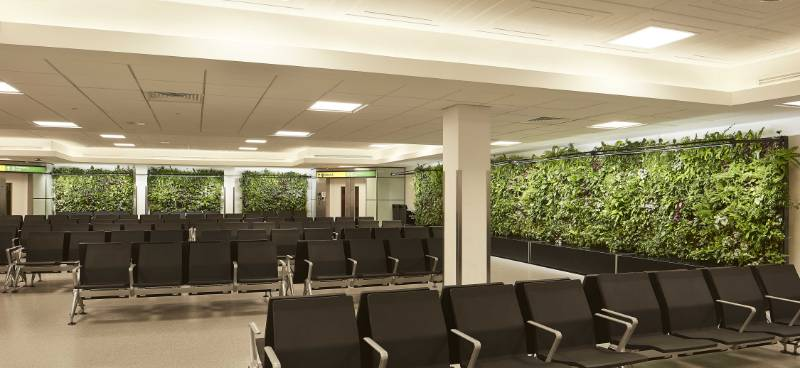 Heathrow Airport, Terminal 3, Gate 25 Living Walls