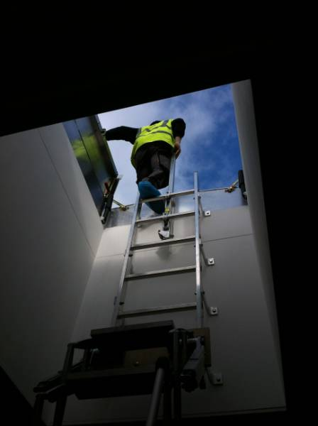 Key considerations when specifying ladders
