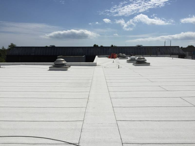 1,000m2 Ecological, Air Purifying Roofing Refurbishment for a Library