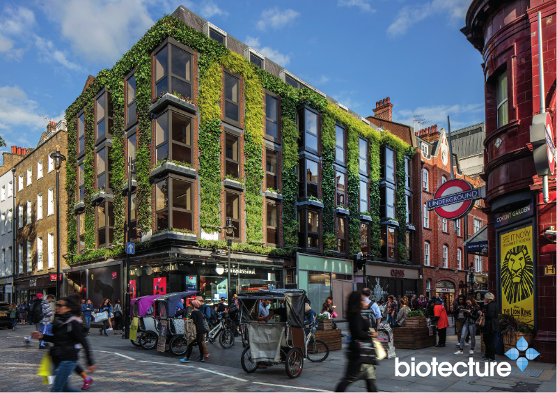Biotecture Living Wall Flyer